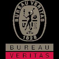 BV-Logo-SPOT-Vector